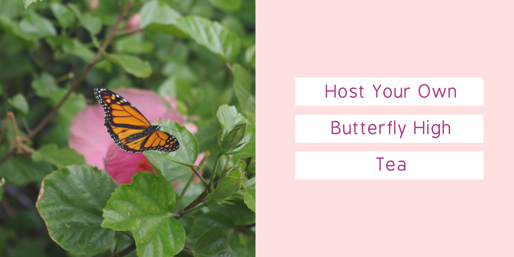 Host Your Own Butterfly High Tea